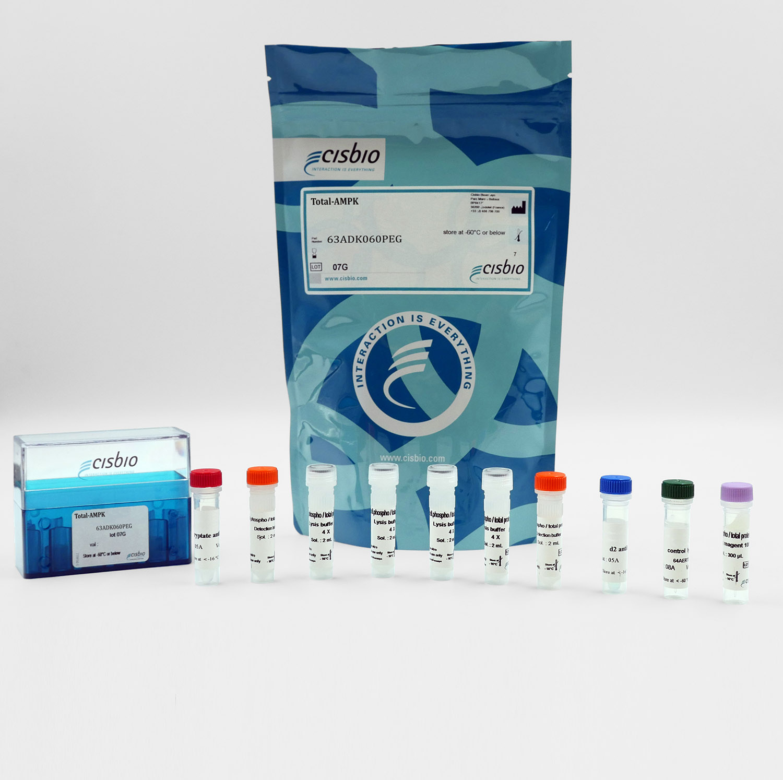 Total AMPK cellular kit
