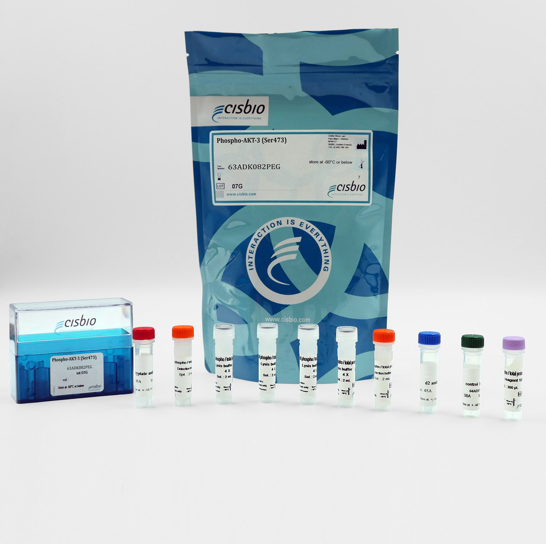 Phospho-AKT3 (Ser473) cellular kit