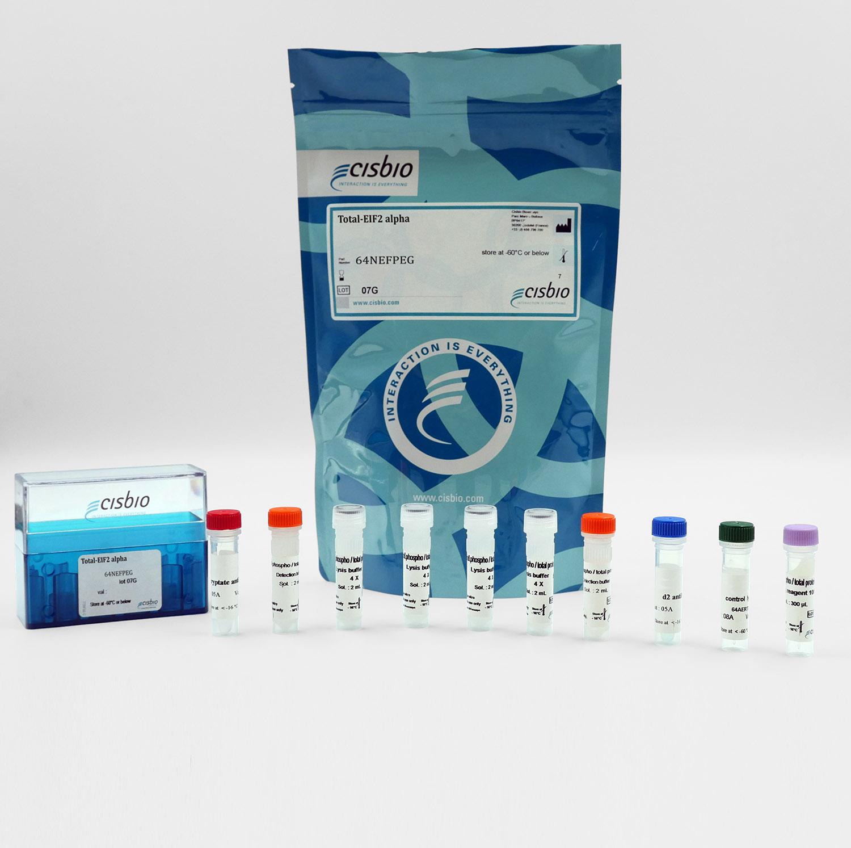 Total EIF2 alpha cellular kit