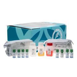 Free and bound Insulin immunoradiometric assay kit
