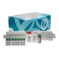 Dosage immunoradiométrique de l'antigène TAG 72 (CA 72-4)