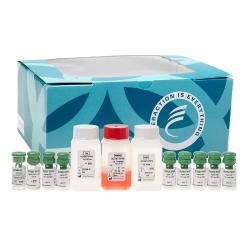 Human trypsin (htrypsin) radioimmunologic assay kit