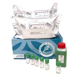 Dosage radioimmunologique de la L-3,3,5-triiodothyronine (T3)