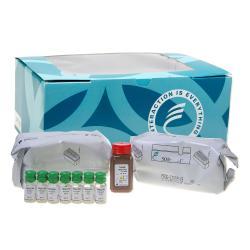 Progesterone radioimmunoassay kit