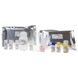 TSH receptor autoantibody (TRAb) radioimmunoassay kit